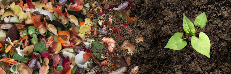 Composting contributes to the cycle of life